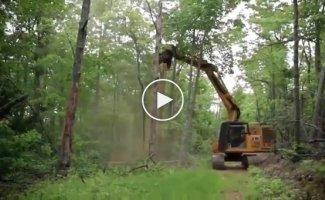 Лесной измельчитель. Мульчер