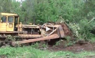 Мощь бульдозера, громкий ужас лесов