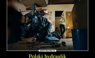 Немного юмора из Польши (11фото)