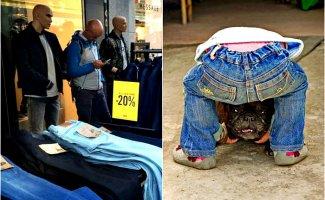 Что происходит или 17 смешных фотографий, к которым нужно присмотреться (18фото)