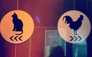 9 необычных табличек на туалетах (9фото)