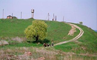 Сельские пейзажи (39фото)