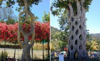 Необычные деревья Акселя Эрландсона (32фото+1видео)