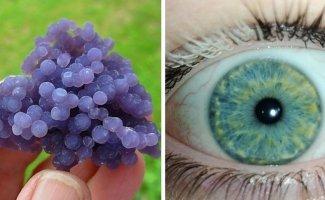 20 фотодоказательств того, что природа легко может удивить даже тех, кто считает, что видел всё (22фото)