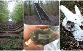 19 таинственных находок, которые люди внезапно сделали в лесу (21фото)