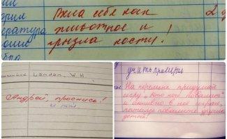 15 замечаний в школьных дневниках, от которых у родителей волосы встают дыбом (16фото)