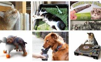 Полезные и необычные предметы для животных и их хозяев (22фото)
