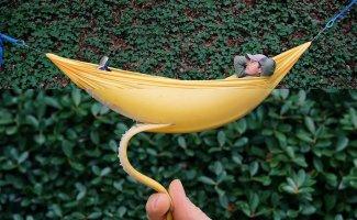 Комбофото: остроумные и веселые фотографии от креативного дизайнера (32фото)