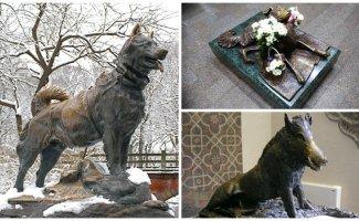 Самые знаменитые памятники животным всего мира (16фото)