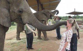 Животные в зоопарках троллят туристов (16 фото)