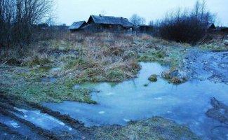 Морозное утро в деревне (20фото)