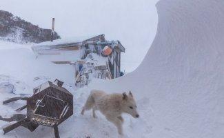 Сахалинская непогода: фото очевидцев (36фото+1тянучка)