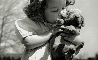 20 фотографий, доказывающих дружбу детей и питомцев (20фото)