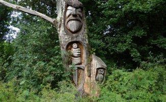 20 неожиданных и странных вещей, которые были найдены во время лесных прогулок (20фото)